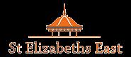 st-eliz-logo-footer